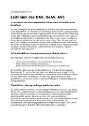 Download Grundsatzprogramm Leitlinien