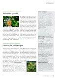 Nachhilfe fürs BergerleBNis - Deutscher Alpenverein - Seite 4