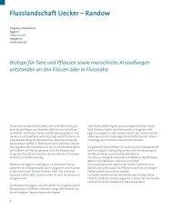 NaturLandschaft - Amt am Stettiner Haff
