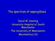 The spectrum of aspergillosis