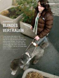 Blindenführhunde: Blindes Vertrauen - aufrad.ch