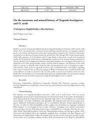 On the taxonomy and natural history of Oxypoda brachyptera and O ...