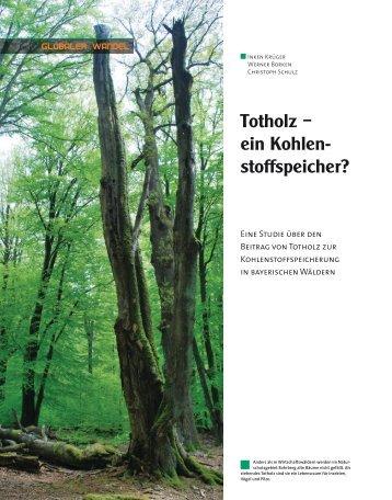 Totholz – ein Kohlen- stoffspeicher? - BayCEER