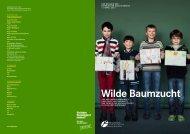 Wilde Baumzucht - Bayerische Staatsforsten