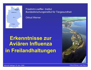 Erkenntnisse zur Aviären Influenza in Freilandhaltungen