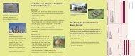 Wir bauen das neue Tierzentrum – Bauen Sie ... - Berner Tierschutz