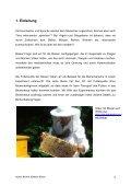 Selbstständige Vertiefungsarbeit Stefanie Pfister ... - Bienenlehrpfad - Seite 3