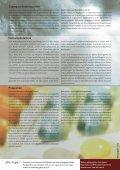 Amphetamine und Methamphetamine - bildungundgesundheit.ch - Seite 4