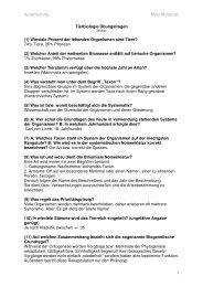 Übungsfragen Stoiber Ausgearbeitet 1