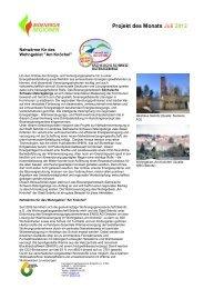 pdf-Datei - Bioenergie-Regionen