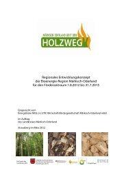PDF-Download (ca. 0.48 MB) - Bioenergie-Regionen