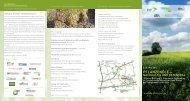 PFLANZENÖLE – - Bioenergie-Regionen