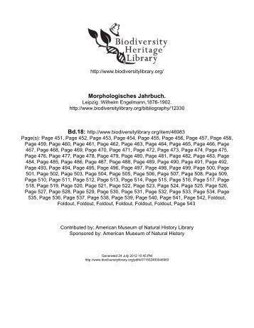 Die Morphologie der Prosobranchier, gesammelt auf einer ...