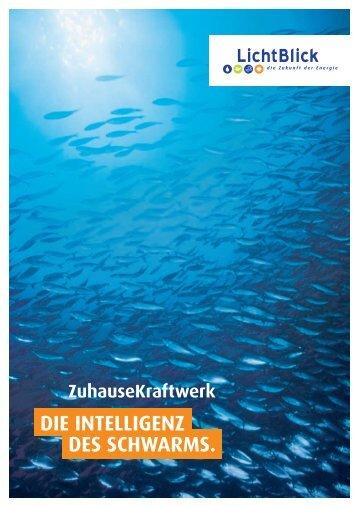 Broschüre über SchwarmStrom und ZuhauseKraftwerk von ...