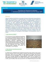 2013 01 Joint Position Paper_ILUC - EEB