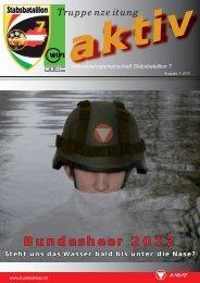 Bundesheer 2012 - Österreichs Bundesheer