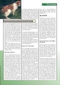 Download PDF - Bund gegen Missbrauch der Tiere - Seite 7
