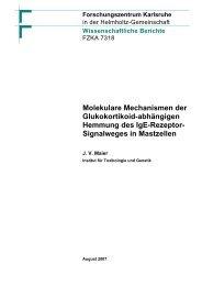 Molekulare Mechanismen der Glukokortikoid ... - Kit-Bibliothek