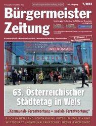 Ausgabe 7/2013 - Webway.at