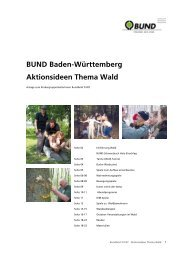BUND Baden-Württemberg Aktionsideen Thema Wald