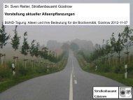 Dr. Sven Reiter, Straßenbauamt Güstrow Vorstellung aktueller ...