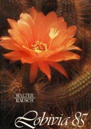 Lobivia acanthoplegma bis zecheri - Au Cactus Francophone