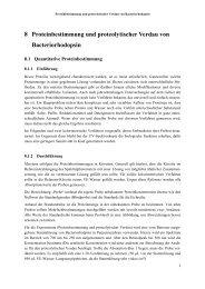 8 Proteinbestimmung und proteolytischer Verdau von Bacteriorhodopsin