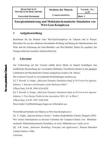 Energieminimierung und Molekulardynamische Simulation von Wirt ...