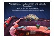Angiogenese: Mechanismen und klinische Bedeutung - Chirurgie
