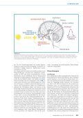 Zirkadiane Rhythmen und Depression: Chronobiologische ... - Seite 2
