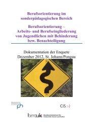 Download Broschüre Berufsorientierung – Arbeits - cisOnline