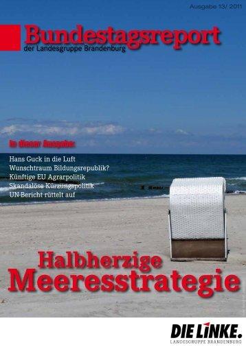 Bundestagsreport 13/2011 - Dagmar Enkelmann