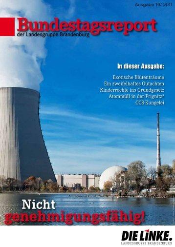 Bundestagsreport 19/2011 - Dagmar Enkelmann