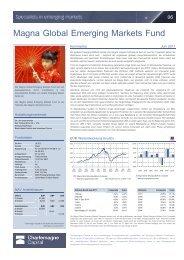 Magna Global Emerging Markets Fund - Das Investment
