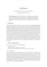Fabian Schillinger - DNS-Tunnel.pdf