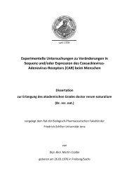 Experimentelle Untersuchungen zu Veränderungen in Sequenz und ...