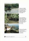 Jahreszeiten in den Tropen und Cichlidenzucht - - Seite 2