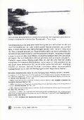 Jahreszeiten in den Tropen und Cichlidenzucht - - Seite 5