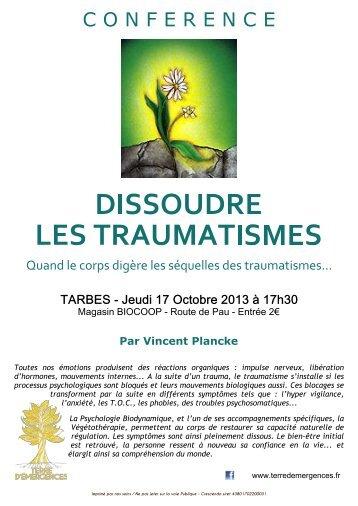 """Conférence """"Dissoudre les traumatismes"""" àTarbes le 17/10/2013"""