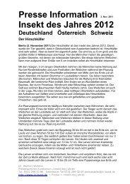 Hirschkäfer Lucanus cervus - DGaaE