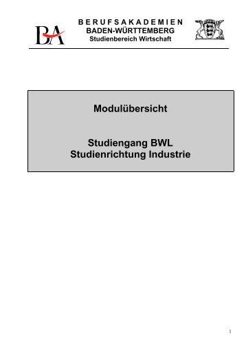 Modulbeschreibungen Überblick bis Jg. 2010 - Duale Hochschule ...