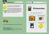 Kichererbse1 2011_07 homepage - Evangelisches Diakoniewerk ...