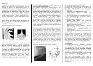 Perkutane endoskopische HWS-OP - Die Bandscheibe