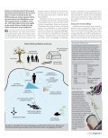 !USBILDUNG - Dive Cooperation - Page 7