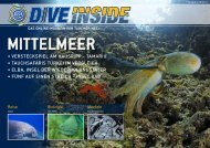Web-Version (10.4 MB) - DiveInside