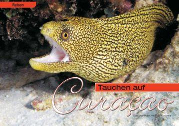 Curaçao - DiveInside