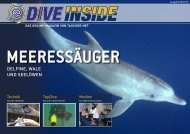 Web-Version (10.2 MB) - DiveInside