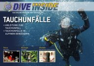 Web-Version (12.6 MB) - DiveInside