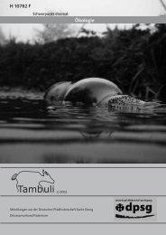 Ausgabe 02/2005 Schwerpunkt: Ökologie - Diözesanverband ...
