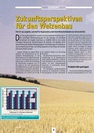 Zukunftsperspektiven für den Weizenbau ... - DSV